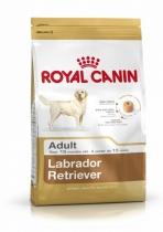 Pasja hrana royal canin